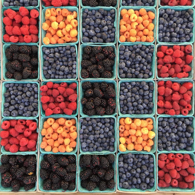 berries representing antioxidants