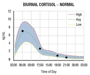 normal cortisol curve